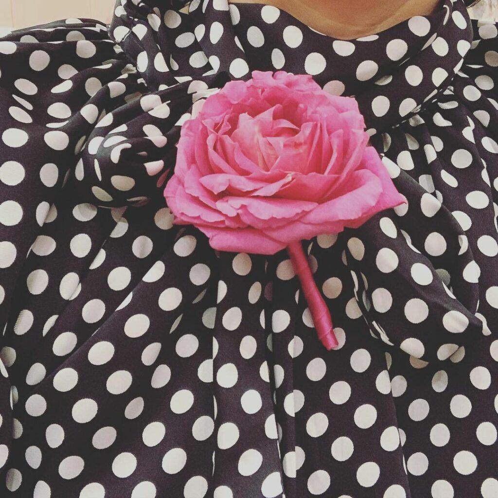 Rose der Neos / Riebenbauer