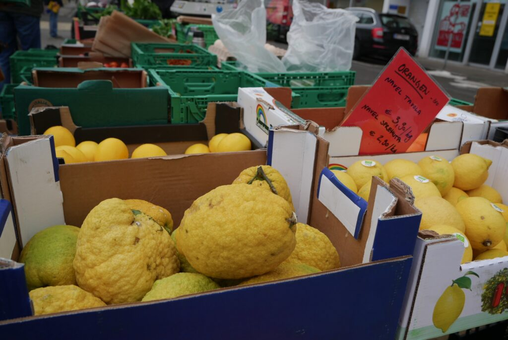 Vogl-Markt: Bio-Martin