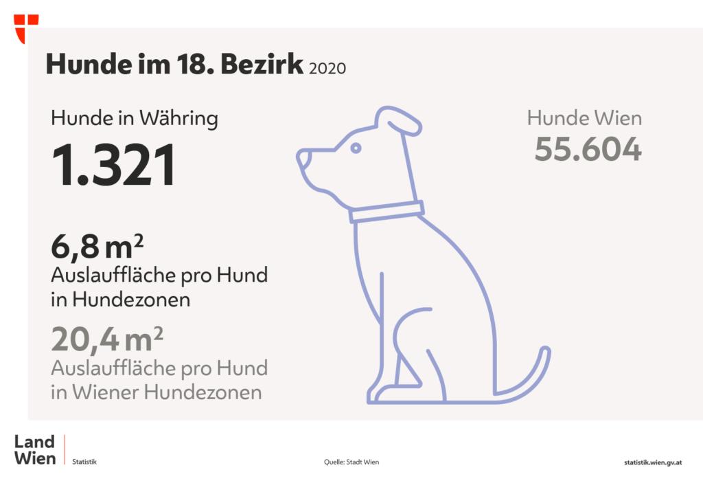 Grafik die Anzahl der Hunde in Währing zeigt