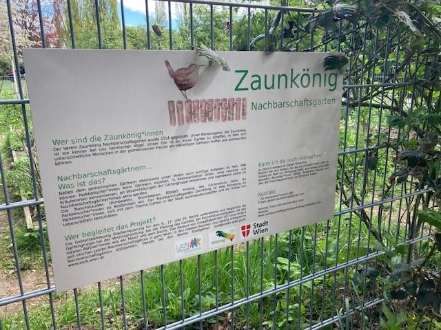 Zaunkönig - Gemeinschaftsgarten